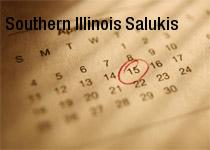 Southern Illinois Salukis Mens Basketball